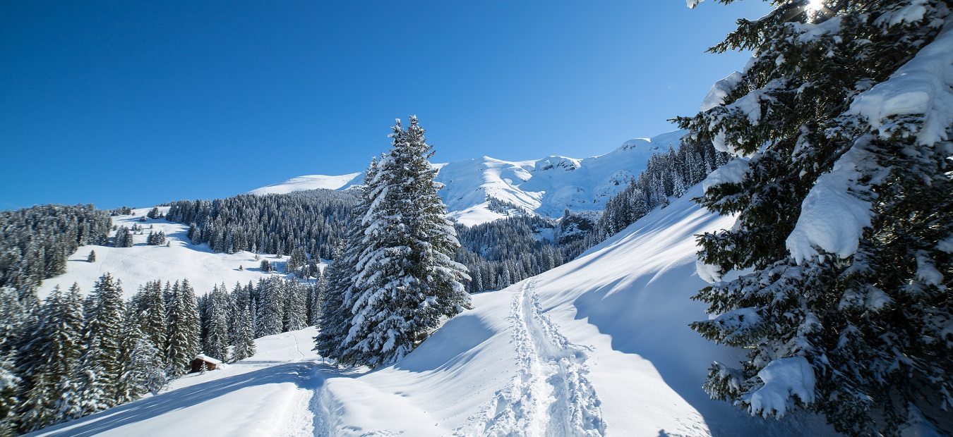 Megeve in the snow