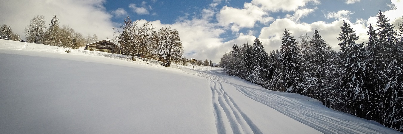 Ski Tracks in Powder in Megeve